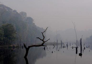 Na Amazônia, até áreas alagadas estão vulneráveis à incêndios