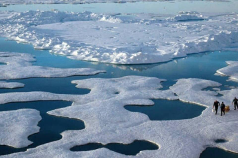 artico - arctic