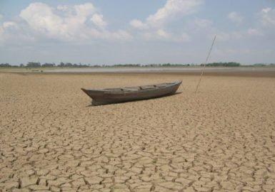 Seca na Amazônia teve a mão do homem