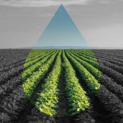 Agrotóxicos, agrotoxin