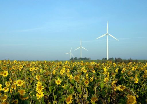 Energia eólica, wind energy