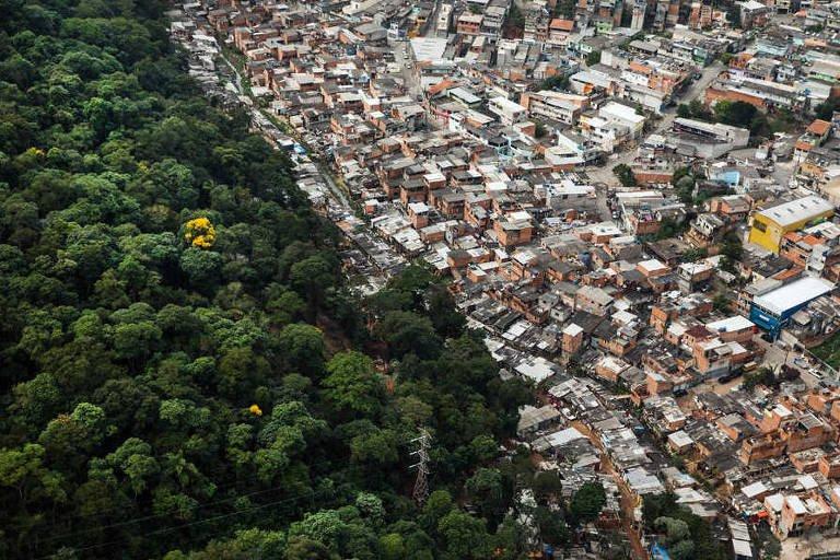 Mata Altântica perto do desmatamento zero, Atlantic rainforest, zero deforestation