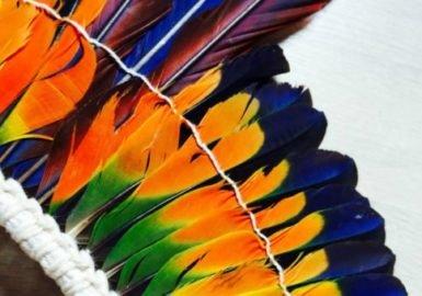 Todo dia era Dia do Orgulho LGBT+ para os povos indígenas