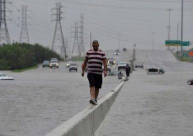 Lutar contra as mudanças climáticas dá dinheiro