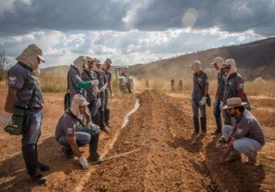 O ABC do Cerrado dá lição de sustentabilidade
