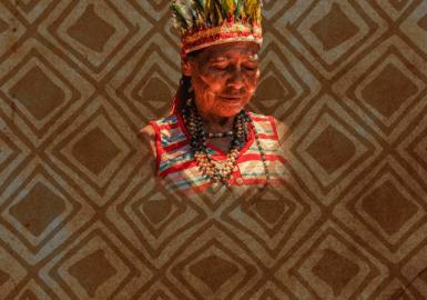 Somos todos Guarani Kaiowá
